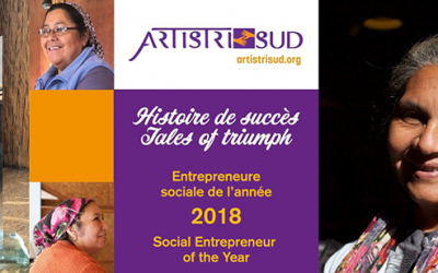 Artistri Sud Social Entrepreneur of the Year Winner!